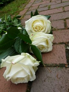 roses, white, funeral